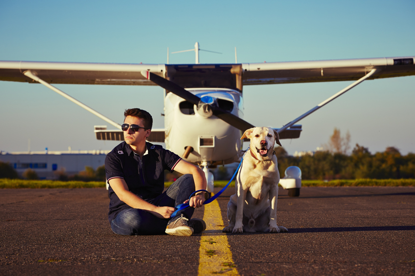 viaggiare-cane-aereo