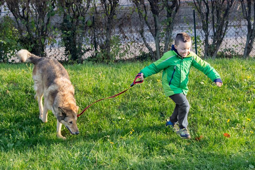 bambino e cane che corrono insieme sul prato