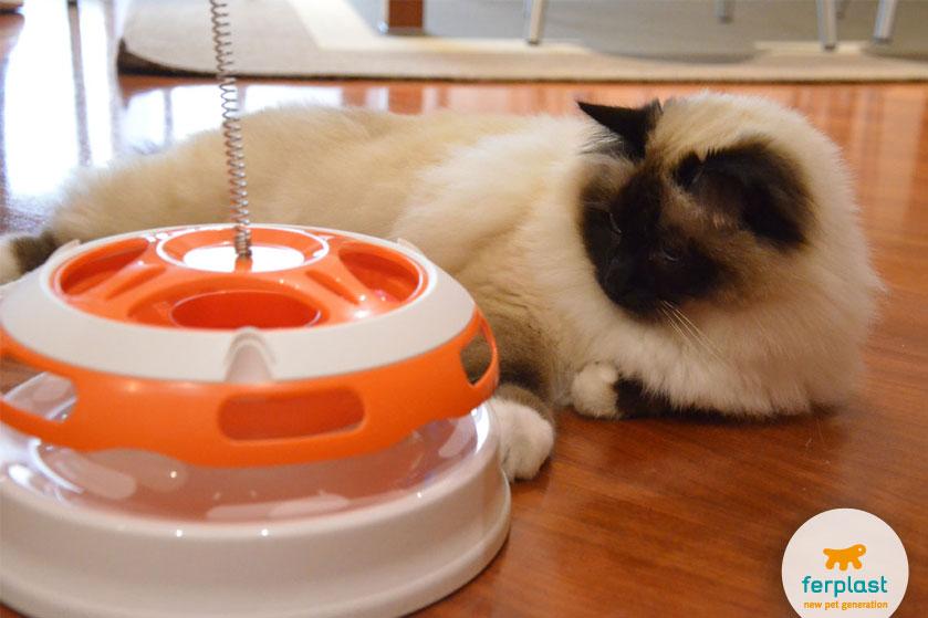 gioco-gatto-ferplast