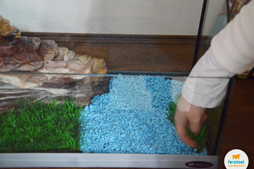 Allestire un acquario per le tartarughe love ferplast for Acquario esterno per tartarughe