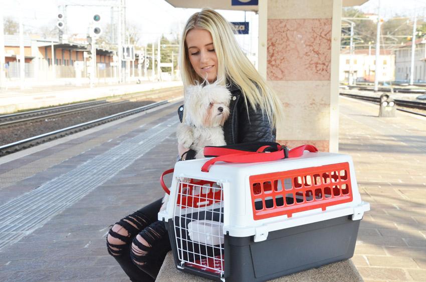 trasportare-cane-treno