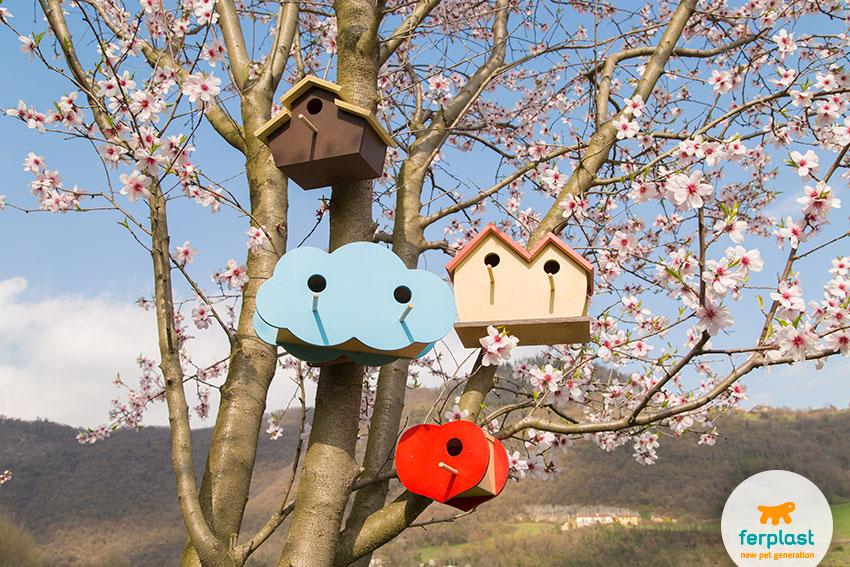 casette-per-uccelli-giardino-ferplast-fiori-mandorlo