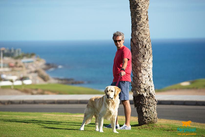 Fazer fitness com o cão
