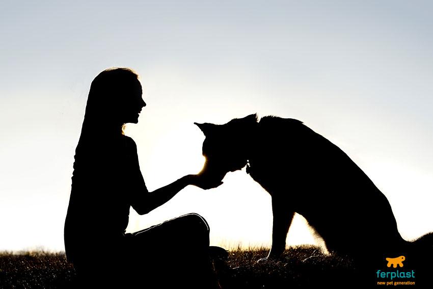 scegliere-il-cane-giusto