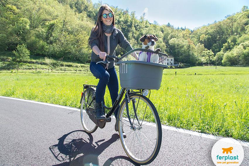 come portare il cane in bici