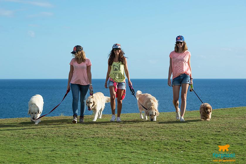 golf_club_petfriendly