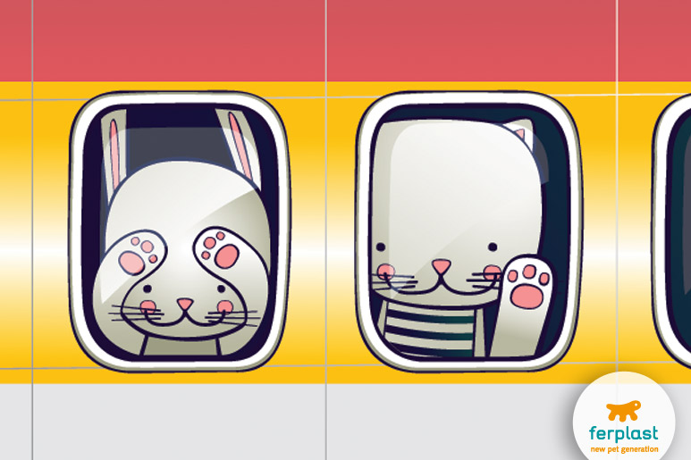 viaggiare-aereo-gatto