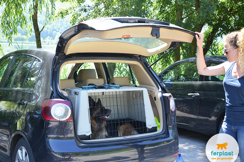 Viaggiare con cani di taglia grande love ferplast for Recinto per cani taglia grande