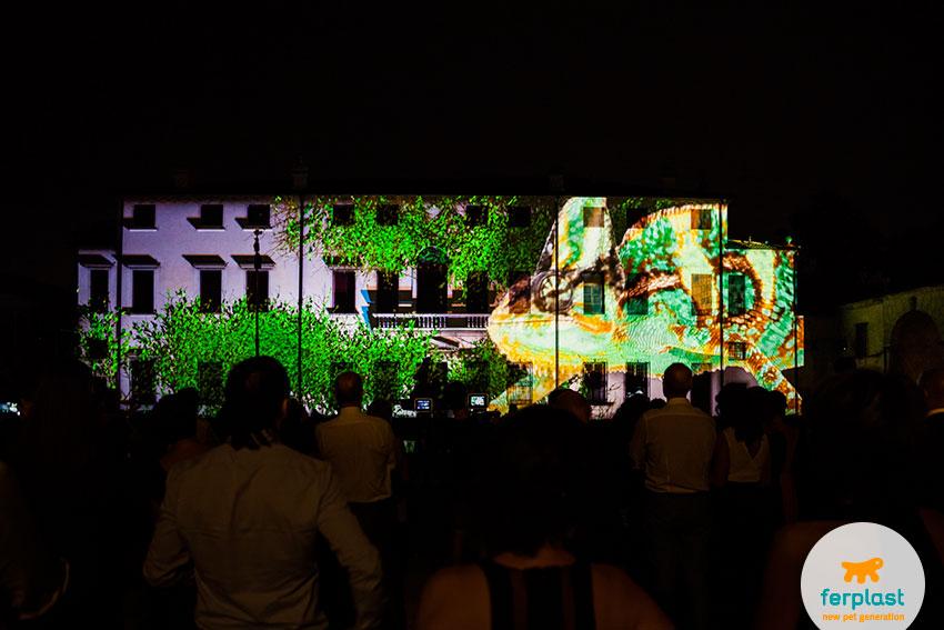 spettacolo video 3d per la festa del cinquantesimo anniversario ferplast