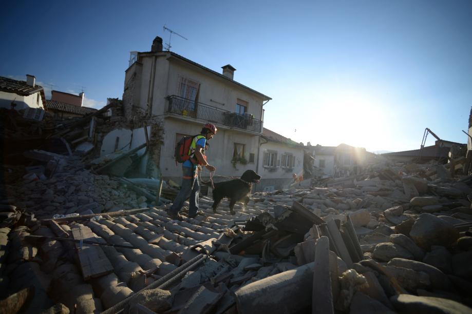 terremoto agosto 2016 squadre cinofile
