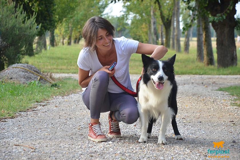 addestramento_cani_vicenza_we_dog_it