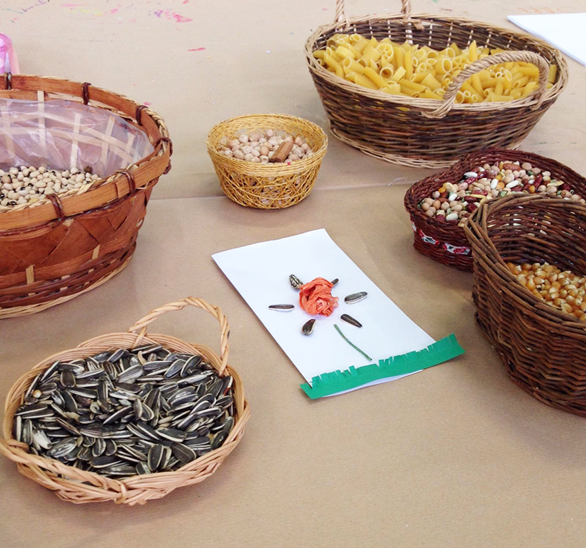 agricoltura_bio_fattoria_didattica_biofarm_marina
