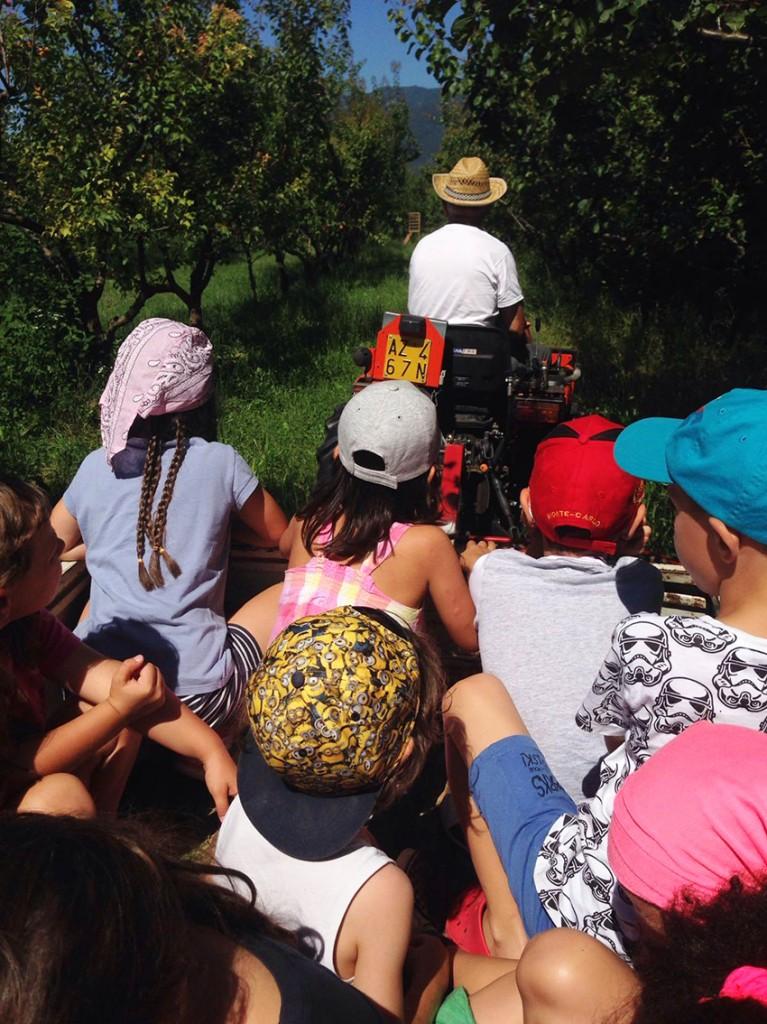 attivita_fattoria_didattica_biofarm_borso_del_grappa