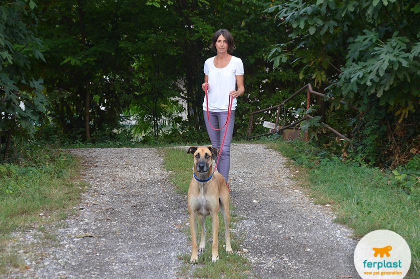guinaglio_lungo_cani_passeggiata_addestramento_ferplast