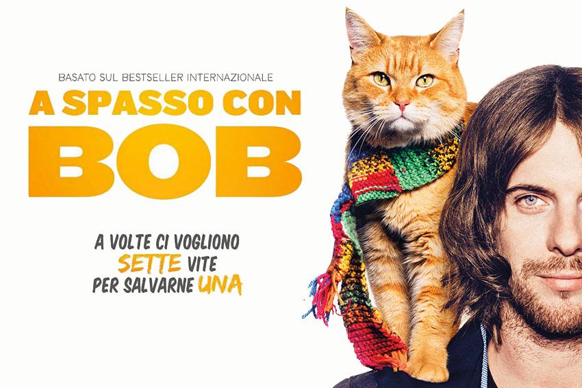 ferplast_recensione_animali_a_spasso_con_bob
