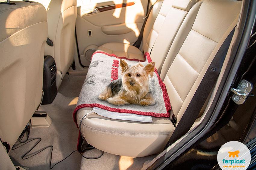 tappetino riscaldante per auto per cani