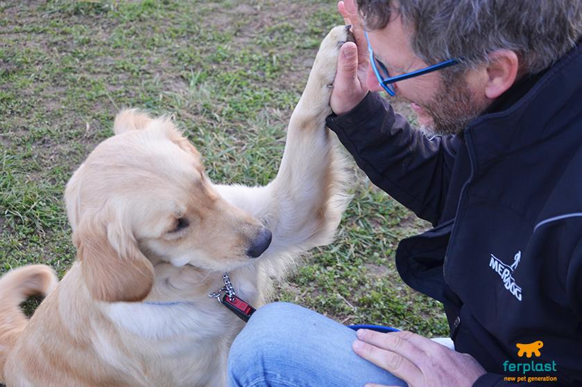 la_cuccia_di_romeo_centro_addestramento_cani