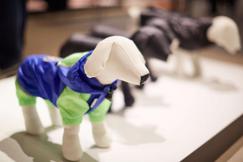 cappottini per cani ferplast al pitti bimbo 2017
