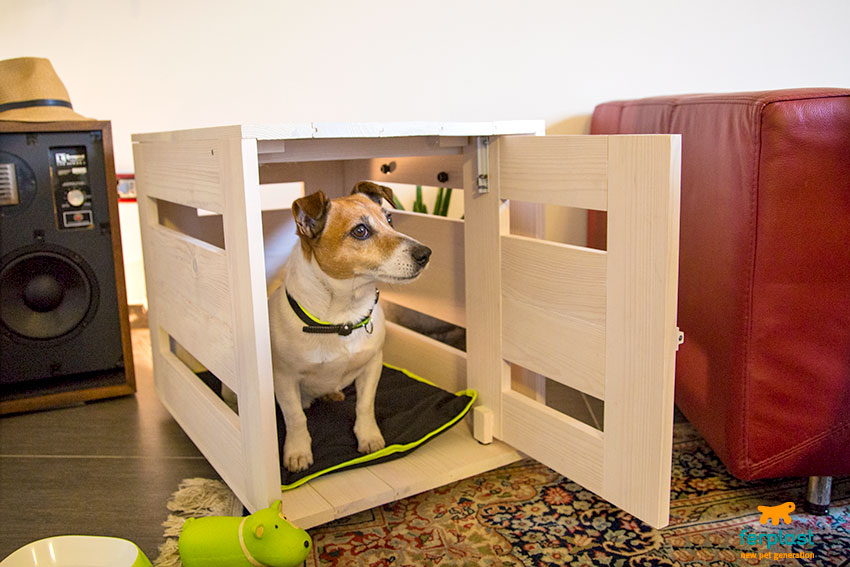 kennel-per-cani-quale-scegliere-cuccia-da-interni