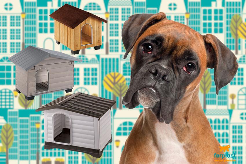 come trovare la misura della cuccia per taglia di cane