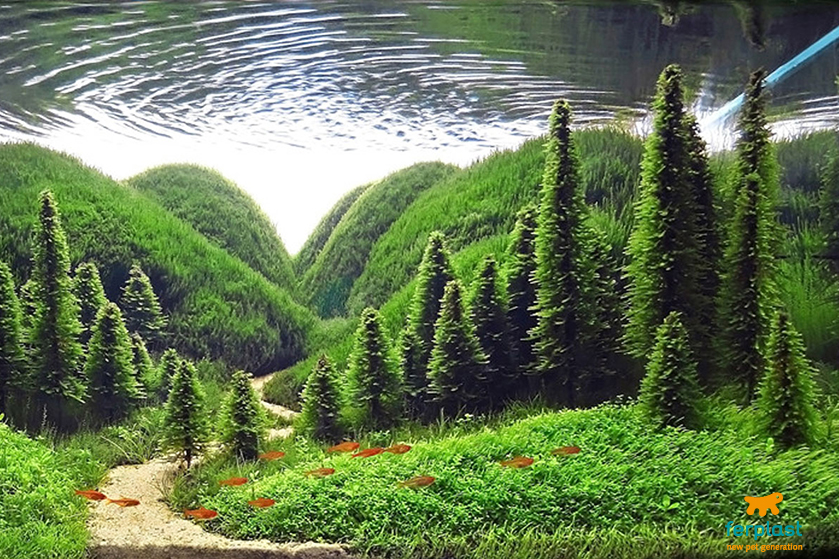 Zen Aquarium Love Ferplast