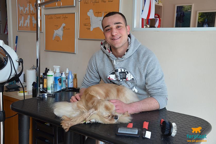 silver_dog_di_luca_bevilacqua_cornedo_vicentino