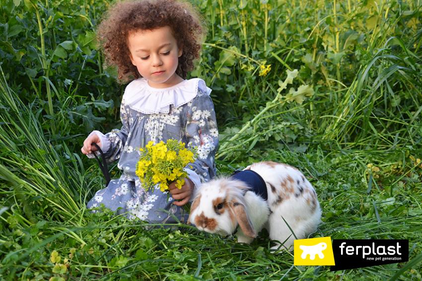 conejo_caminar_en_el_jardín_correa