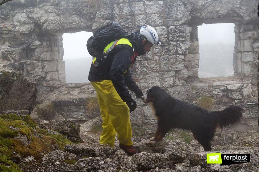 come-addestrare-cane-corsi-salvataggio
