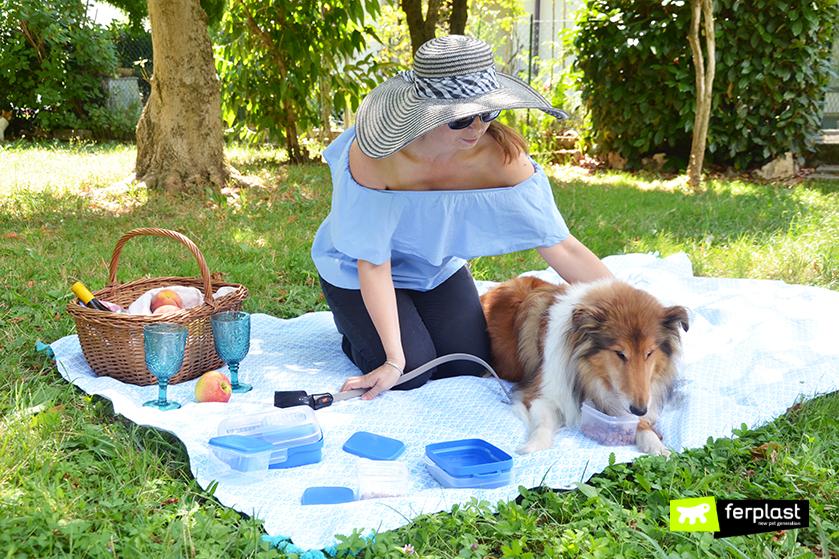 fare_picnic_con_cane_cosa_portare_consigli