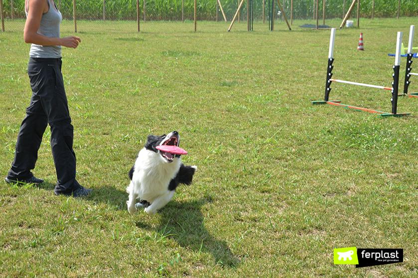 tenersi_in_forma_giocando_a_frisbee