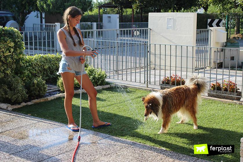dog_shower_doccia_ferplast