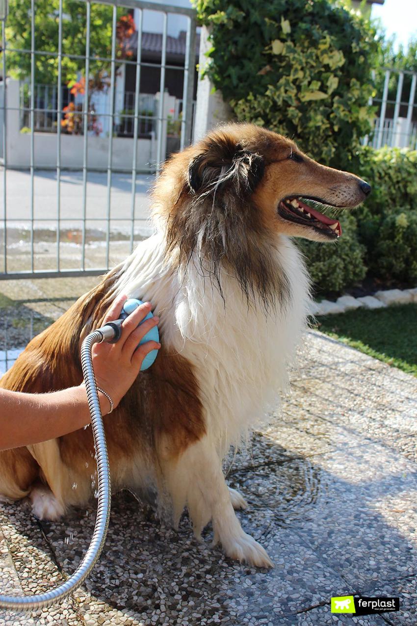 dog_shower_ferplast_doccia_caratteristiche