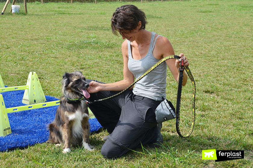 correa_larga_perro_que_necesitas
