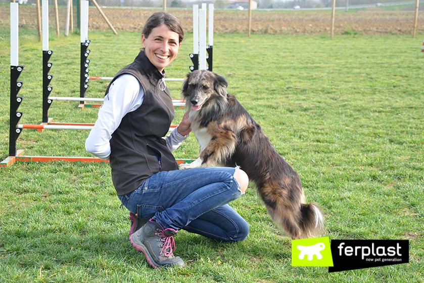 centro_de_entrenamiento_para_perros_wedogit_vicenza