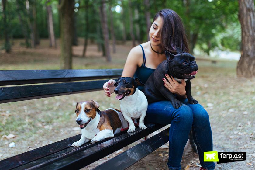 dog_sitter_come_diventare