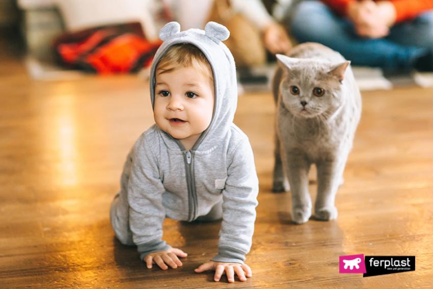 lezioni_vita_che_bambini_imparano_dai_gatti
