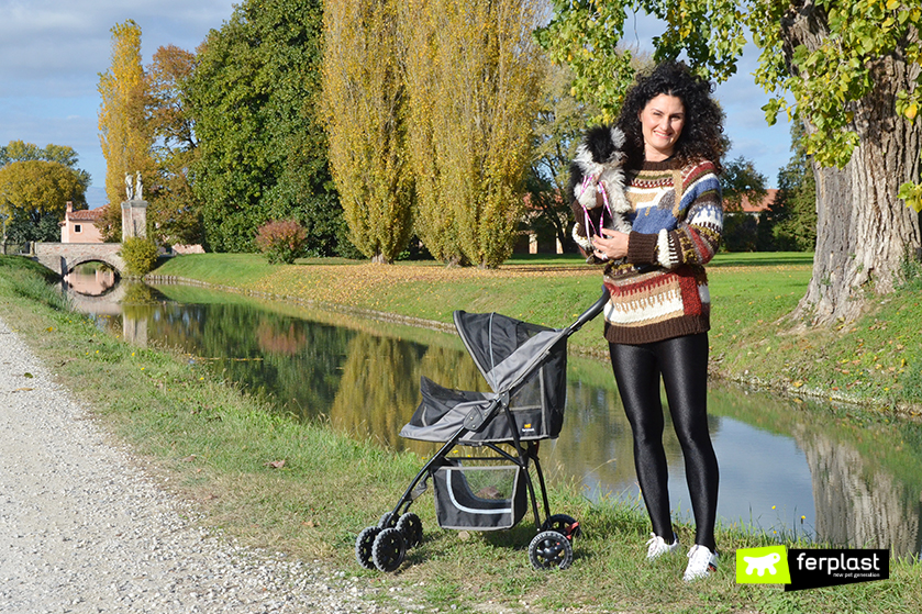 passeggiate_autunno_cane_piccolo_consigli