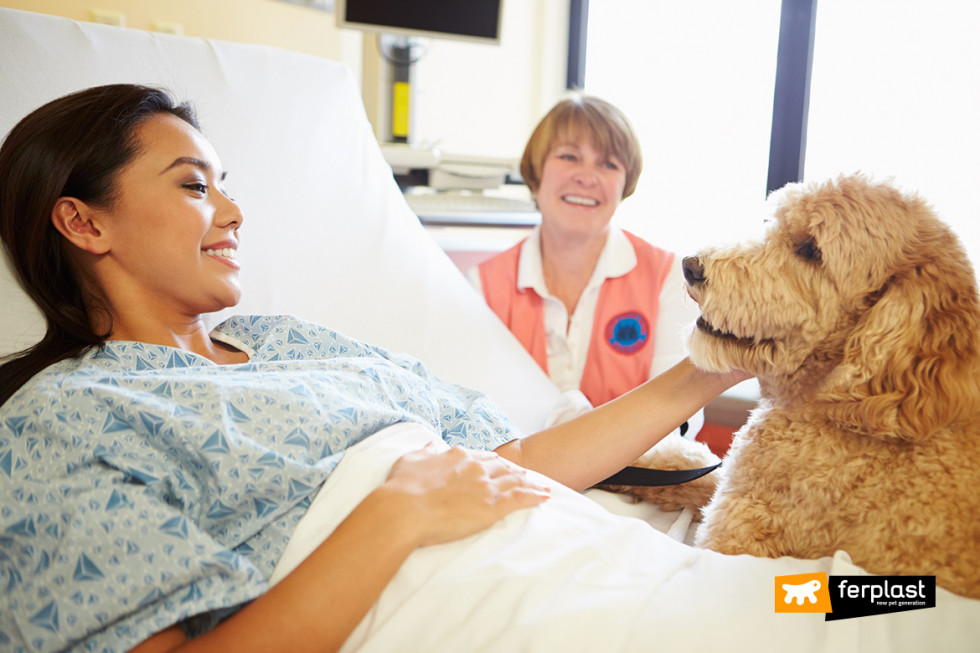 ferplast-pet-therapy-ospedale-oncologia